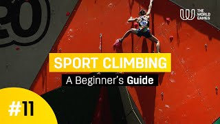 Beginners guide thumbnail