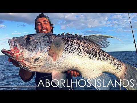 Aborlhos Island Fishing Trip - Westside Fishing - Saltwater Charters - EP 1