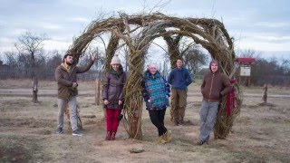 видео Живая беседка из деревьев