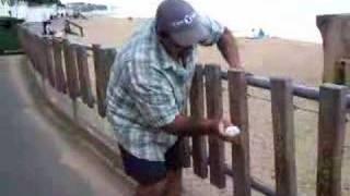 Funny Xylophone Fence