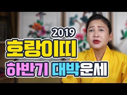 [호랑이띠운세] 2019년 하반기 운세/띠별운세/나이별운세/범띠 대박운세 | 인천점집 용화신당