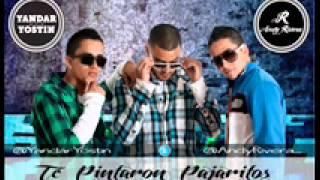 Te Pintaron Pajaritos Yandar & Yostin by chalo