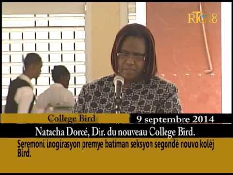College bird haiti