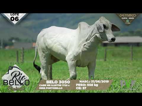 LOTE 06   BELO 3050