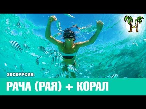 Острова Рача + Корал за 1 день | Racha + Coral Islands For 1 Day
