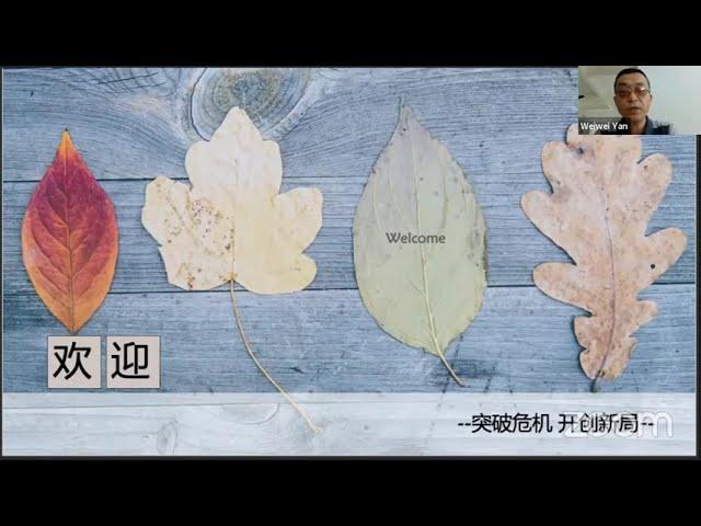 突破危机  开创新局  讲座    Grace Feng 冯春梅 姐妹分享 11-14-2020   国际基督徒华商协会与美国证主协会合办 网络讲座 zoom同步进行