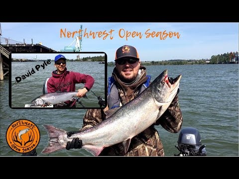 Willamette River Chinook Salmon Fishing 2019 | How To Catch Spring Chinook | Fishing With David Pyle