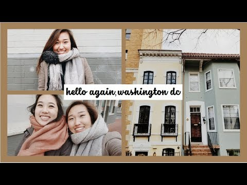 Hello Again(!), Washington D.C. | Travel Vlog