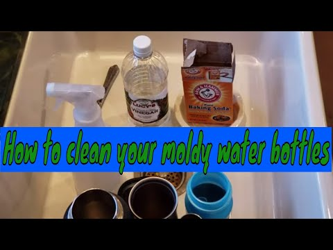 How to Clean Moldy Water Bottles