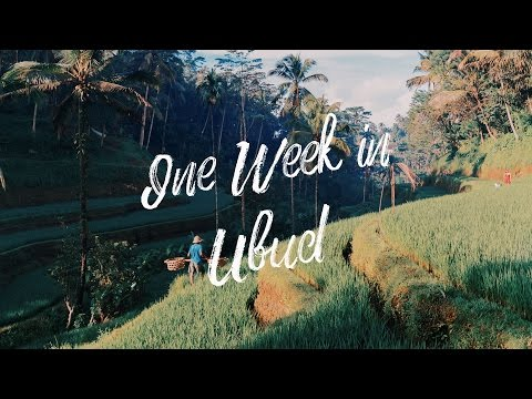 One Week in Ubud(Bali) & Favorite Travel Filmmaking Gear