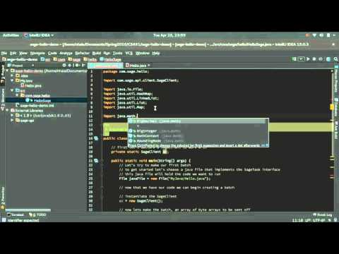 Sage API - Tutorial