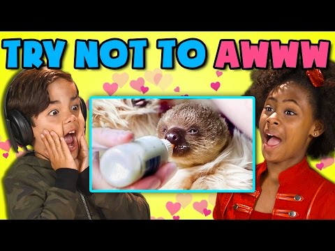 KIDS REACT TO TRY NOT TO AWWW CHALLENGE