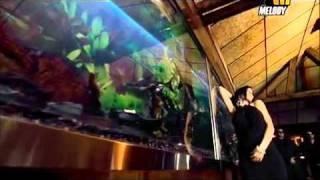 نونا دلعني-فيديو.mp4
