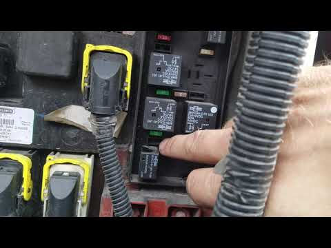 Fast Blinker No Trailer Turn Signal On Freightliner Cascadia