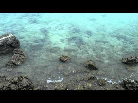 ทะเลเกาะล้าน