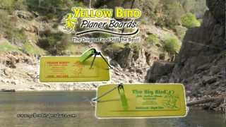 Planer Board Instructional, Yellow Bird