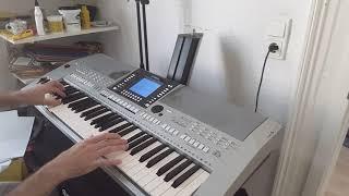 Wolfgang Petry - Alles bleibt wie es war - Coverversion Dorfjunge Yamaha PSR-S710