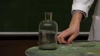 Химия. Химические реакции органических веществ. Часть 2