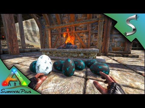 STEALING WILD DIMORPH EGGS! DIMORPH RAISING & MUTATED TERROR BIRD - Ark Survival Plus [Gameplay E24]