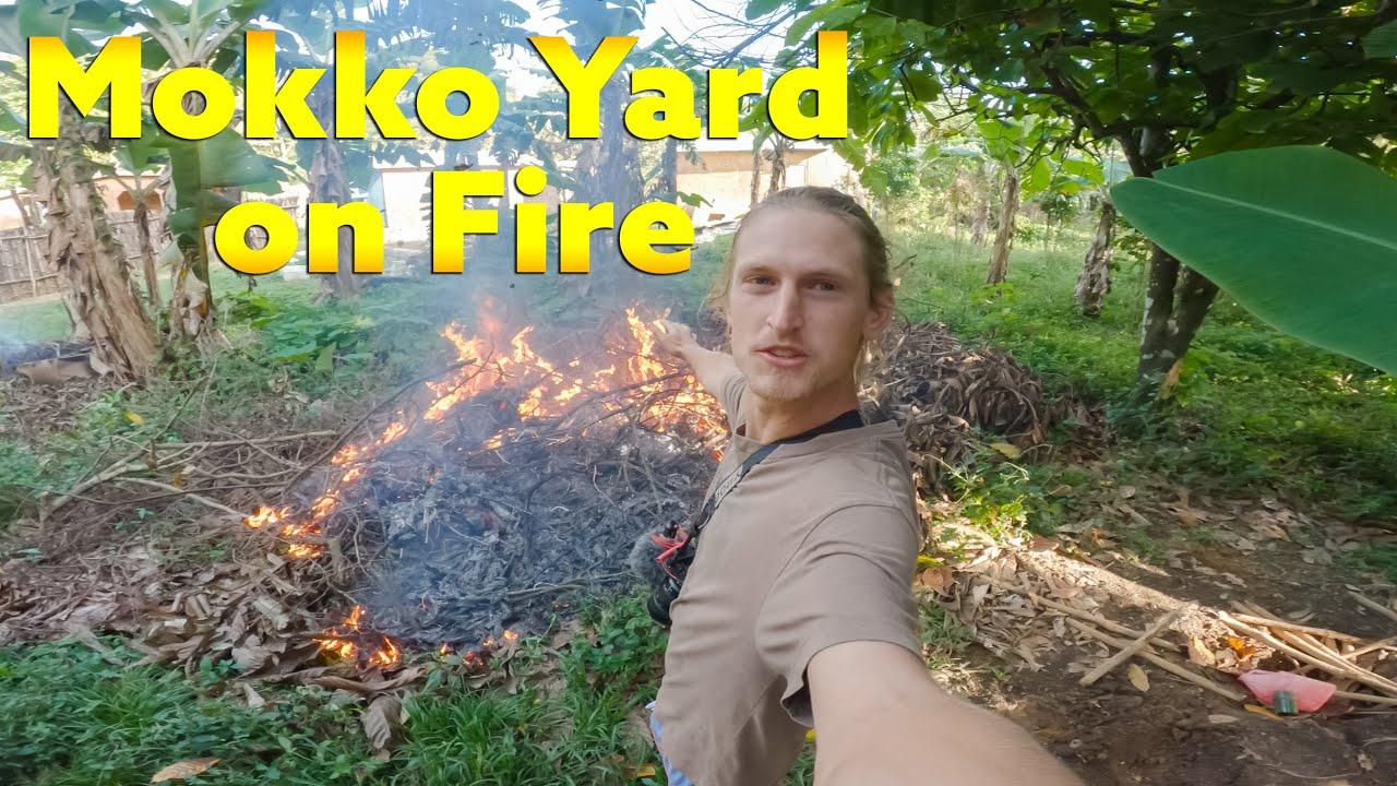 Mokko's Yard is on Fire !