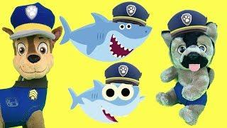 Baby Shark canción con juguetes paw patrol en español:Videos bebes patrulla canina en la piscina