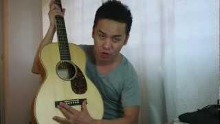 Larrivee P-03 Special Edition USA Made Parlor Guitar Review in Singapore