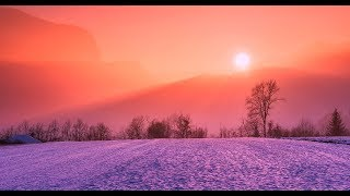'Kireina' [Japanese LoFi Chill beats] Relax/study/unwind/Sit-back/take it easy