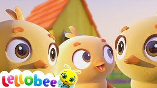 5 Little Ducks! | NEW Little Baby Bum: Nursery Rhymes & Kids Songs ♫ | ABCs and 123s