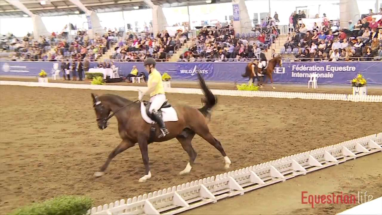 Peta Cormack and Jaybee Allstar 6 Year Old Young Horse Sydney CDI 2012
