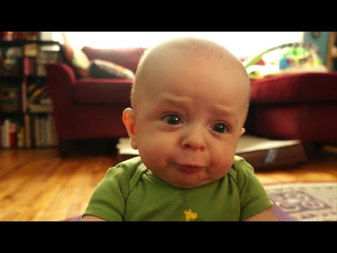 Top 10 Funny Baby Videos (2015)
