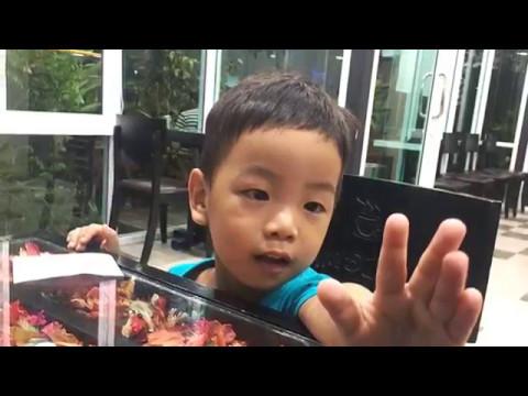 ?????????????? - khmer song 2017, youtube.com/HangMeasVideo #Chkae_rut_bok_pout | Heng Chhay 2017