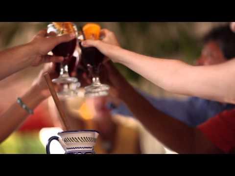 Sarasota County Destination Video - UK (3 Minute)