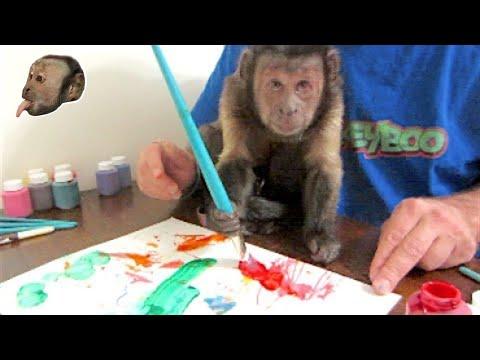 MonkeyBoo Art Work!