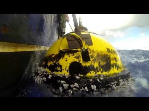 Manly Hydraulics - Waverider Buoy