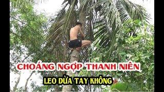 CHOÁNG NGỢP Thanh Niên Tay Không Leo Cây Hái Dừa Và Cái Kết