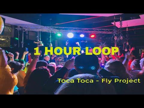 Fry Project - Toca Toca 1 Hour