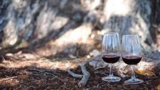 Jakie wino powinieneś pić? - Czerwone czy białe #1