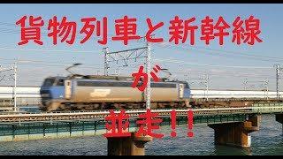 貨物列車と新幹線が並走します。