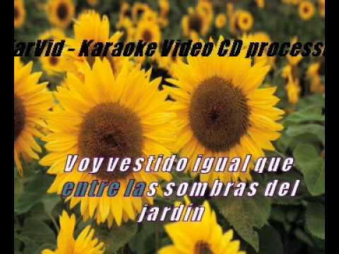 Karaoke - Amante a la antigua.avi