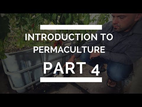 Introduction to Permaculture Part 4 - Swales,  Rainwater Tanks & Buying The Right Piece of Land