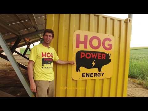 Hog Power Solar Energy Info