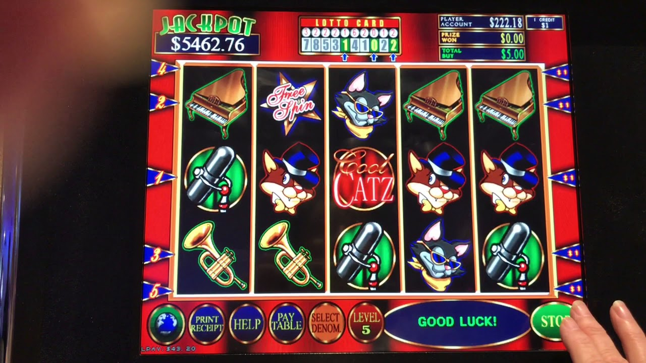 Cool Cats Slot Machine