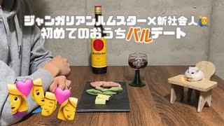 【チーズバルデート】25歳新社会人とジャンガリアンハムスターの晩酌【かわいい、小悪魔、ナイトルーティン】