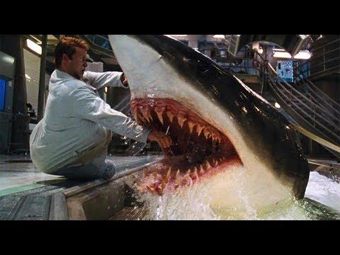 一部讓你全程腎上素飄升的鯊魚片《深海狂鯊》,全程無尿點緊張到窒息!