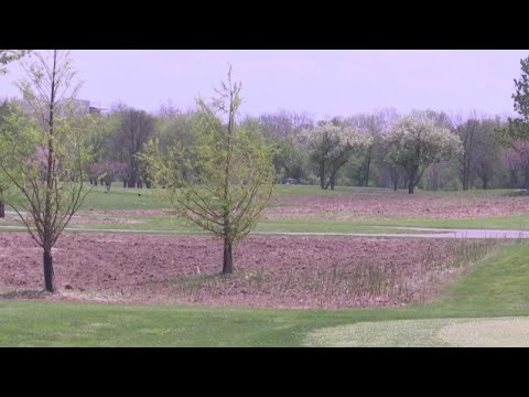 Natural grasslands to help reduce chemical use at city golf courses