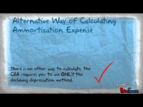Amortization and Income Tax