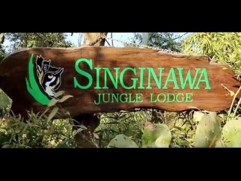 Book Luxury Hotel & Wildlife Jungle Resort in Kanha National