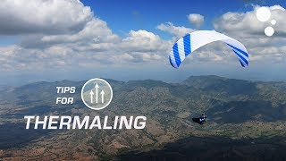 Thermaling tips for beginner paraglider pilots