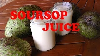 Soursop Juice Raw healthy drink to help cure diseases like cancer and rheumatism