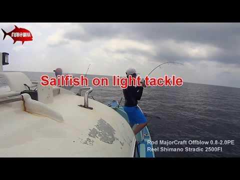 Malaysia Offshore - Sailfish on light tackle